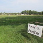 Humans vs. Mosquitoes at West Potomac Park